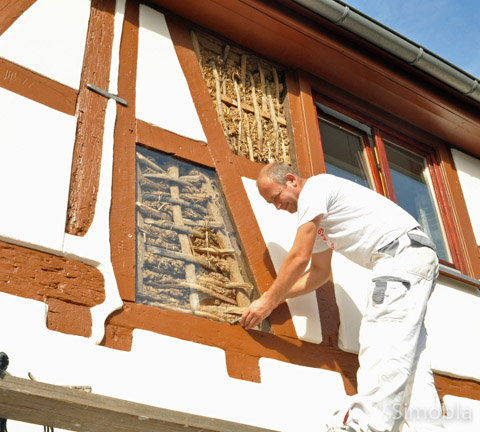 Faible für Fachwerk: In der Straße Alt-Sindlingen saniert die Firma Farinola ein Fachwerkhaus. Ein Element der Wand wurde nicht verputzt, sondern bleibt hinter Glas sichtbar.