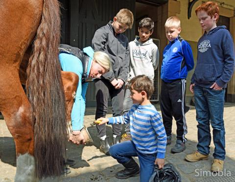 Wie ein Hufeisen ausgekratzt wird, brachte Trainerin Denise Nube den Jungen bei.
