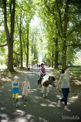 """Der geführte Spazierritt durch den schönen Meister-Park gehört zum Ferienangebot """"Spielerisch reiten lernen."""""""
