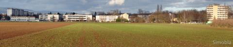 Am Sindlinger Ortsrand würde die Stadt ein großes Wohngebiet errichten lassen